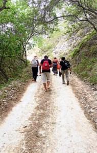 El verdor de la naturaleza es un marco envolvente para quienes visitan la comuna Agua Blanca. Foto: Mario Rodríguez / El Telégrafo