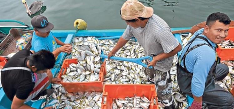 La localidad pesquera de San Mateo guarda diversas tradiciones cholas. Su gente está siempre presta a ayudar a los visitantes... son gente muy amable. Foto: Rodolfo Párraga / El Telégrafo