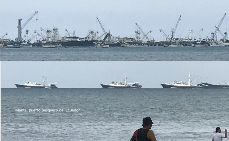 04 Manta puerto pesquero